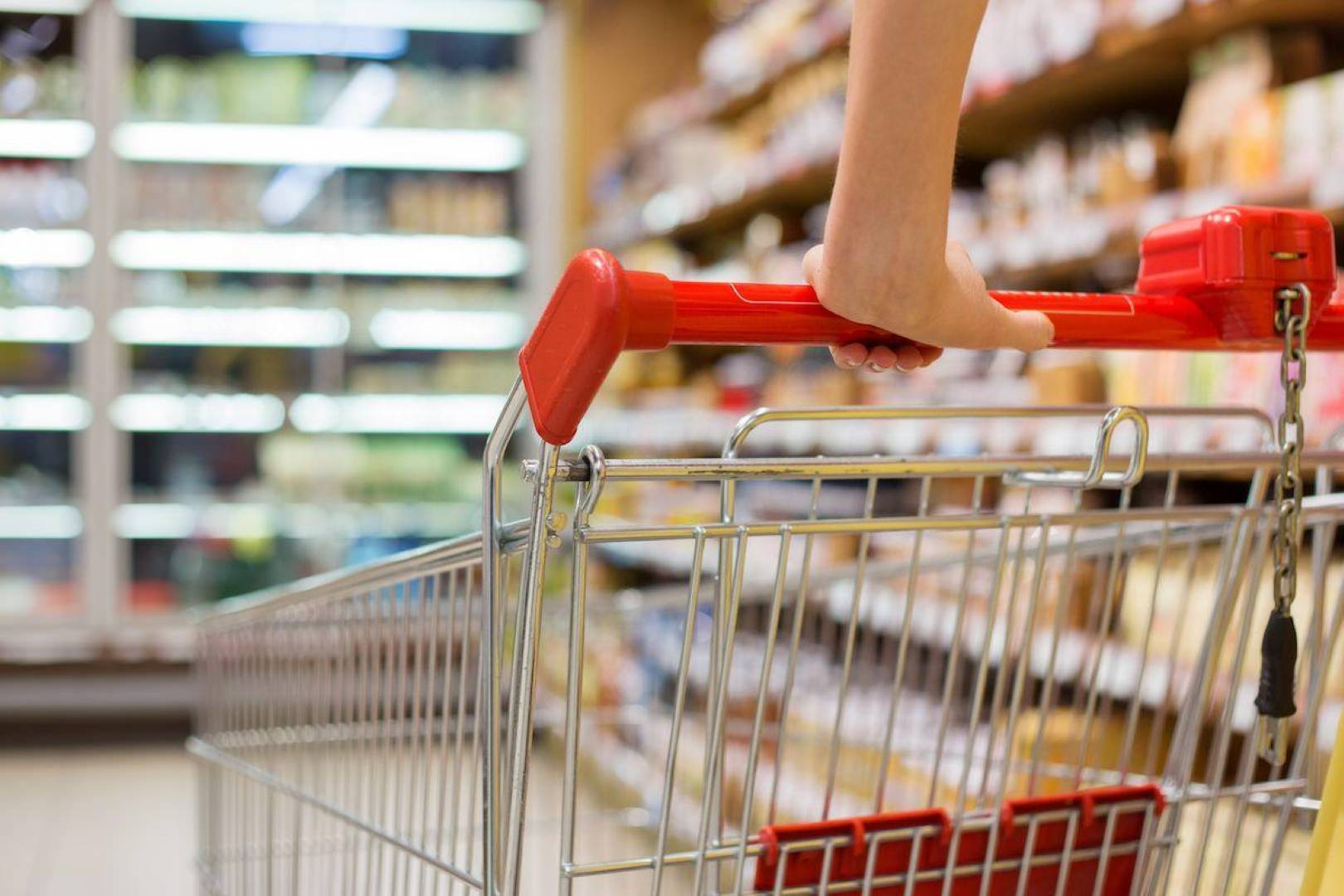 where to buy gluten free bread