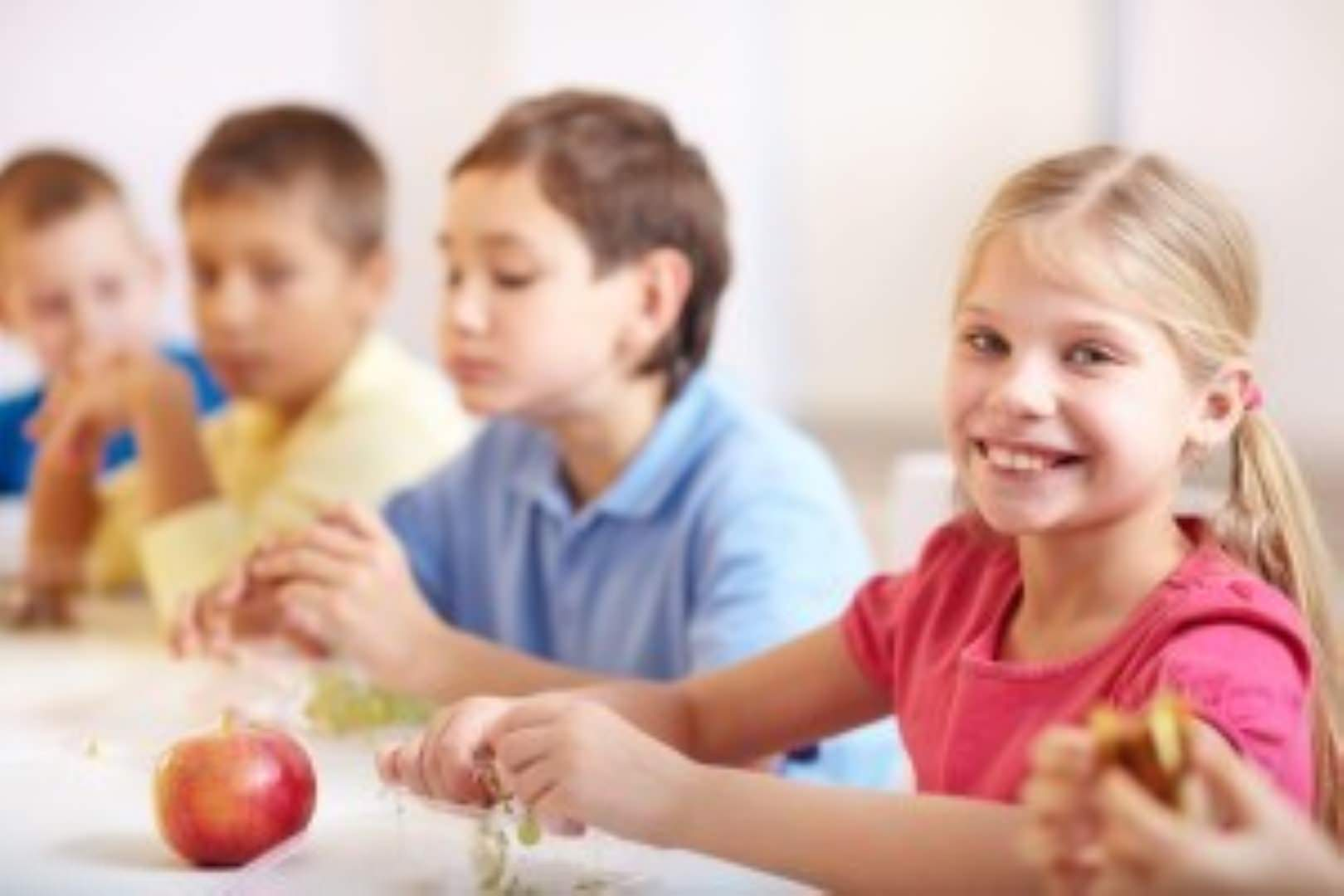 gluten free lunchbox ideas
