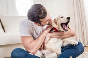 can dogs detect celiac disease