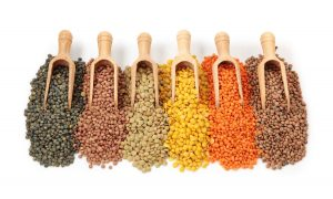 what are pulses healthy living